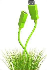 PC Cable in Green Grass